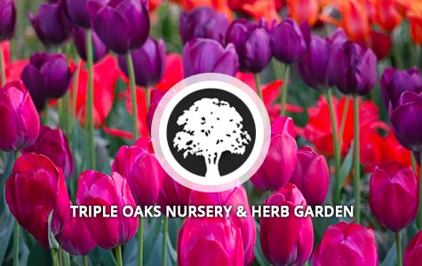 Triple Oaks Nursery
